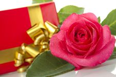 Red Rose, Gift Box Royalty Free Stock Photo