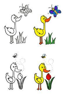 Free Little Duck Exploring The Garden Stock Photography - 20756782