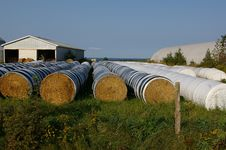 Free Hay Bales In Row 1 Royalty Free Stock Image - 20759556