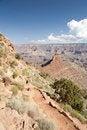 Free Cedar Ridge, Grand Canyon Stock Photo - 20764550