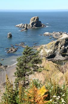 Free Ecola State Park, Oregon Coast & Pacific Ocean. Stock Photo - 20762240