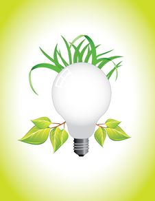 Free Ecological Light Bulb Royalty Free Stock Photography - 20762307