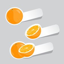 Free Vector Oranges Stock Photography - 20764232