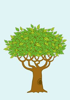 Free Illustration Of The Tree Royalty Free Stock Photos - 20765328