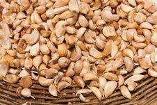 Free Many Of Garlic ,food Ingredient Stock Image - 20765501