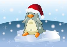 Free Christmas Penguin Royalty Free Stock Image - 20768216