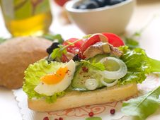 Free Sandwich Stock Photos - 20768693