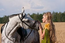Free Horse And Woman Face To Face Stock Photos - 20769253