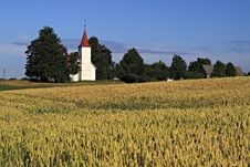 Old White Church In Field. Royalty Free Stock Images