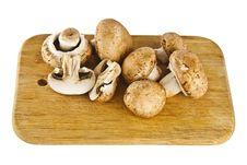 Free Peanut Mushrooms Stock Images - 20769954