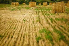 Free Straw Haystacks On The  Field Stock Photos - 20771053