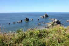 Free Ecola State Park, Oregon Coast & Pacific Ocean. Royalty Free Stock Image - 20771606