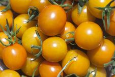 Free Orange Cherry Tomatos Stock Photo - 20772020
