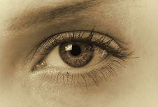 Free Female Eye Stock Photos - 20774363