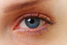 Free Female Eye Royalty Free Stock Photo - 20774445