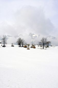 Free Snowy Landscape Stock Photography - 20774942