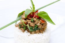 Spicy Pork Fried With Hot Basil On Rice Royalty Free Stock Photography