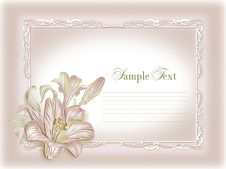 Free Wedding Invitation, Frame, Lily Stock Image - 20775181