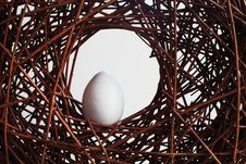 Free Egg In A Nest Over Branches Royalty Free Stock Photos - 20775928