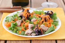 Salad With Tuna Royalty Free Stock Images