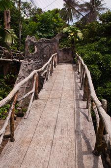 Free Jungle Walkway Royalty Free Stock Image - 20779406