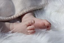 Free Newborn Baby Clutching Mothers Finger Royalty Free Stock Images - 20779789