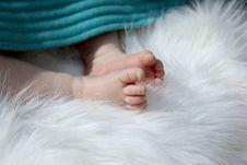 Free Newborn Baby Feet Royalty Free Stock Images - 20779989