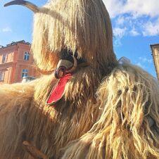 Traditional Folk Costume At The Carnival  Kurentovanje  Ljubljana  Slovenia. Royalty Free Stock Image