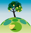 Free Pear Tree On Grass Royalty Free Stock Image - 20783086