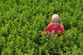 Free Little Girl In Field Royalty Free Stock Photos - 20785148