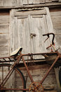 Free Old Bicycle And Old Wood House Royalty Free Stock Photos - 20785888