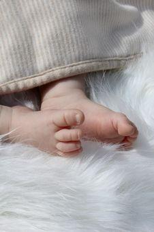 Free Newborn Baby Feet Stock Photography - 20780122