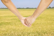 Free Successful Farmers Hold Their Hands Royalty Free Stock Photos - 20780438