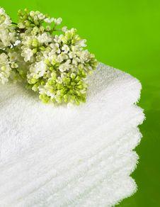 Free Towel Stock Photos - 20781043