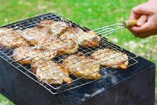 Free Steaks In Barbecue Grill Stock Photo - 20781290