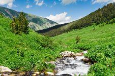 Free Mountain River Royalty Free Stock Photos - 20782148