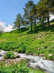 Free Mountain River Royalty Free Stock Photo - 20782165