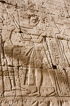 Free Egyptian Hieroglyphs Royalty Free Stock Photo - 20783815
