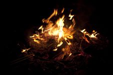 Free Campfire Royalty Free Stock Photos - 20785108