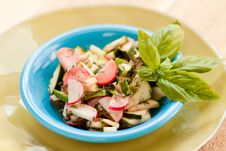 Free Zucchini And Radish Salad With Basil Royalty Free Stock Photo - 20785115