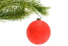 Free Christmas Tree With Bauble Stock Photography - 20787102