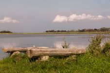 Free Bench By The Water Royalty Free Stock Photo - 20788015