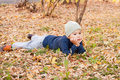 Free Boy Walking In Autumnal Park Stock Photography - 20791812