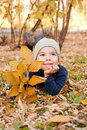 Free Boy Walking In Autumnal Park Royalty Free Stock Photography - 20791987
