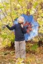 Free Boy Walking In Autumnal Park Royalty Free Stock Photo - 20792735