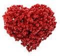 Free Heart Royalty Free Stock Photos - 20797798