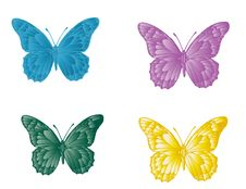 Free Butterfly Royalty Free Stock Images - 20792369