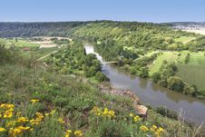 Free Beautiful Vineyard Landscape Royalty Free Stock Images - 20792559