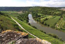 Free Beautiful Vineyard Landscape Royalty Free Stock Image - 20793326