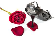 Free Rose And Female Barefoot Persons Royalty Free Stock Photography - 20794077